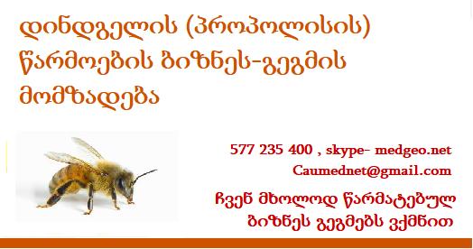 დინდგელის (პროპოლისის) წარმოების ბიზნეს-გეგმის მომზადება 577235 400