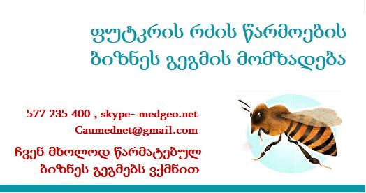 ფუტკრის რძე - ბიზნეს გეგმის მომზადება 577 235 400