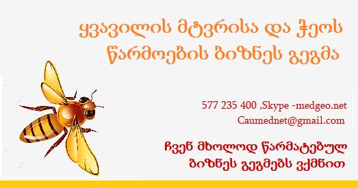 ყვავილის მტვერი და ჭეო - ბიზნეს გეგმები 577 235 400